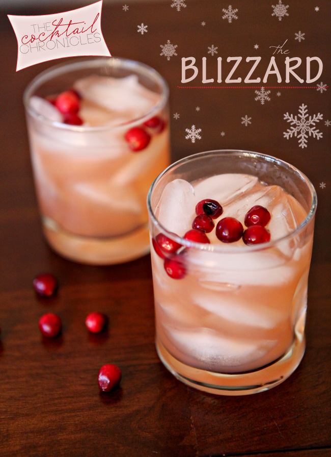 CocktailChronicles_Blizzard02_small