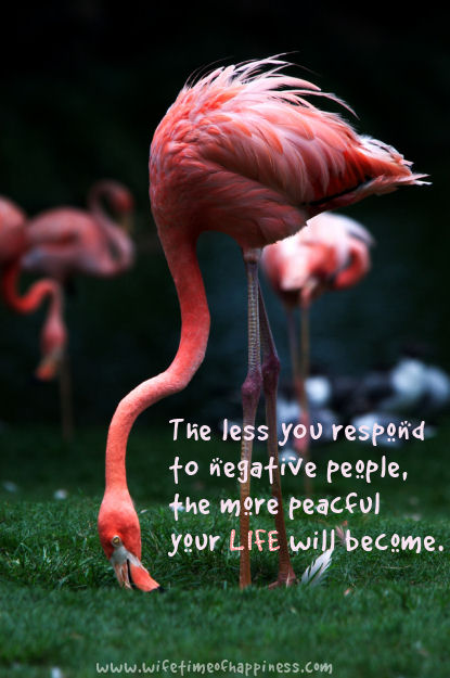 The less you respond to negative people quote