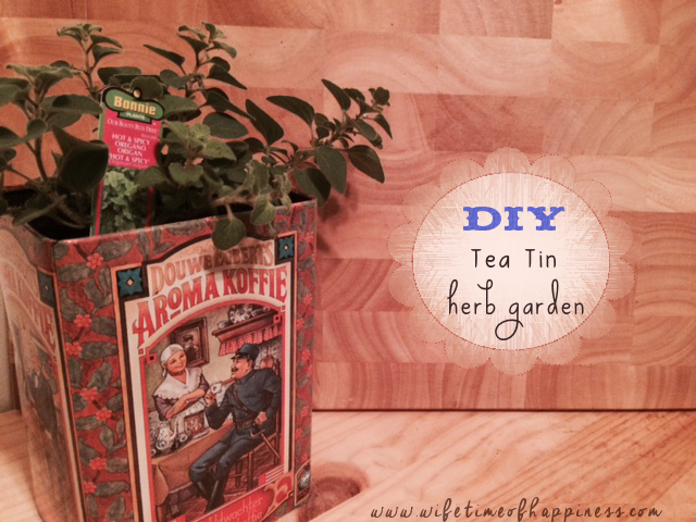 DIY Tea Tin Herb Garden