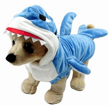 shark-cat-costume