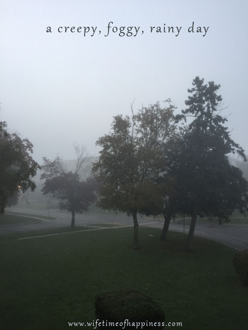 a-foggy-day-picture