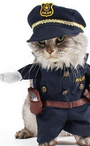 policeman-cat-costume