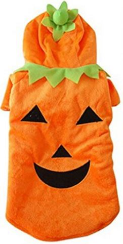 pumpkin-costume-for-cats