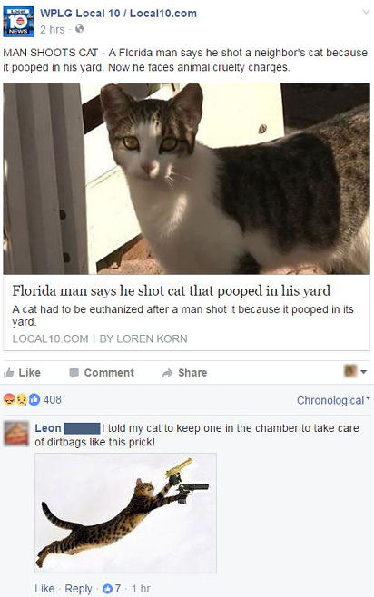 funny facebook comments armed kitty