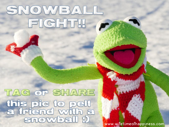 snowball fight game facebook kermit