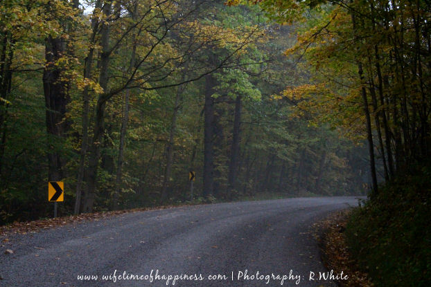 october photo challenge 2017 day 24 dirt road or path