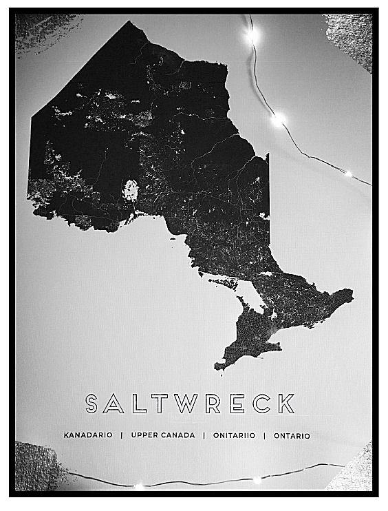 saltwreck map art print ontario